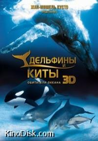 Обложка Дельфины и киты (Dolphins and Whales: Tribes of the Ocean)